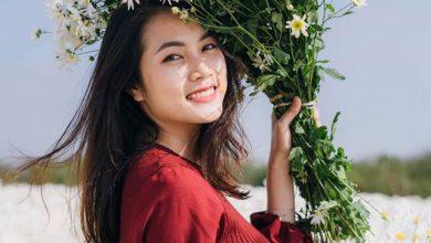 Photo of Kỷ niệm mùa cúc hoạ mi trong lòng Hà Nội