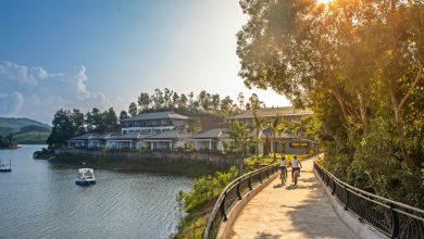 Photo of TOP 8 HOMESTAY PHONG NHA KHIẾN BẠN KHÔNG MUỐN RỜI XA