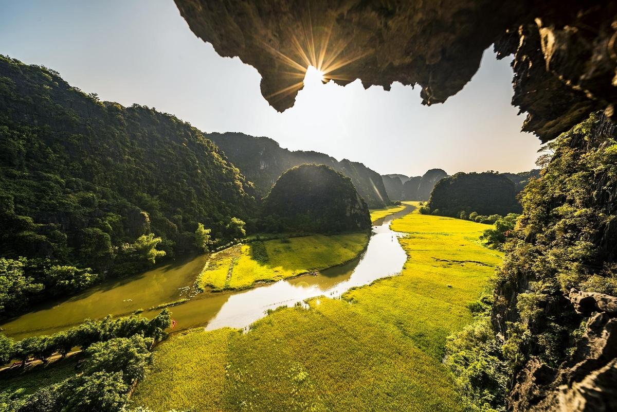 Tam Cốc Ninh Bình đẹp lung linh mùa lúa chín